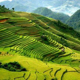 Nam Định - Sapa - Hàm Rồng - Thác Bạc - Hà Khẩu 3 Ngày 4 Đêm